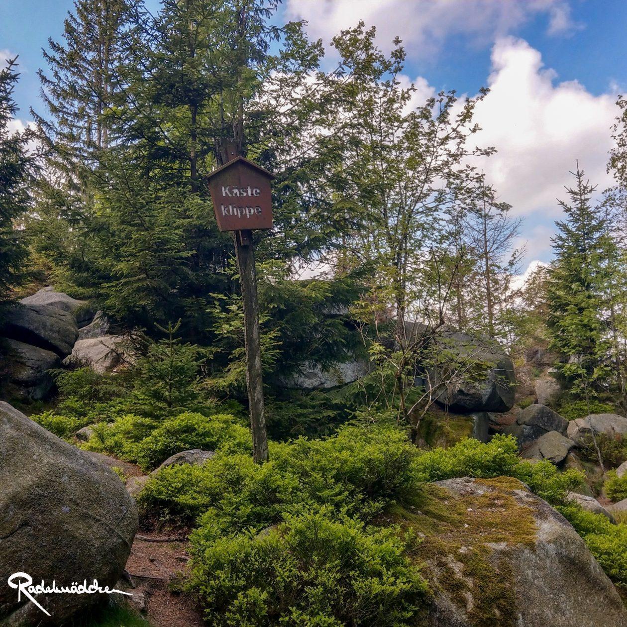 E-MTB-Mountainbike-Harz-Wernigerode-ebike-your-life_Radelmaedchen_Juliane-S-5