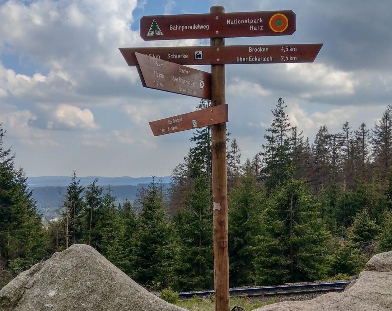 E-MTB-Mountainbike-Harz-Wernigerode-ebike-your-life_Radelmaedchen_Juliane-S-3