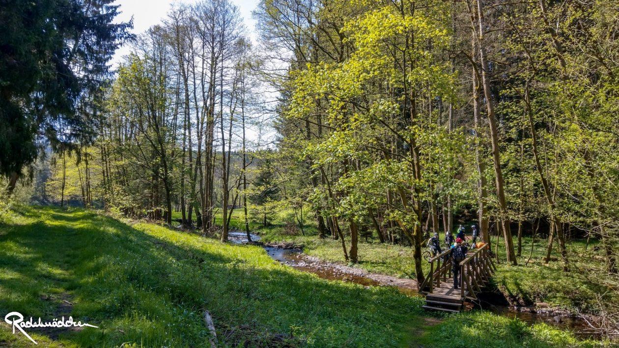 E-MTB-Mountainbike-Harz-Wernigerode-ebike-your-life_Radelmaedchen_Juliane-S-23