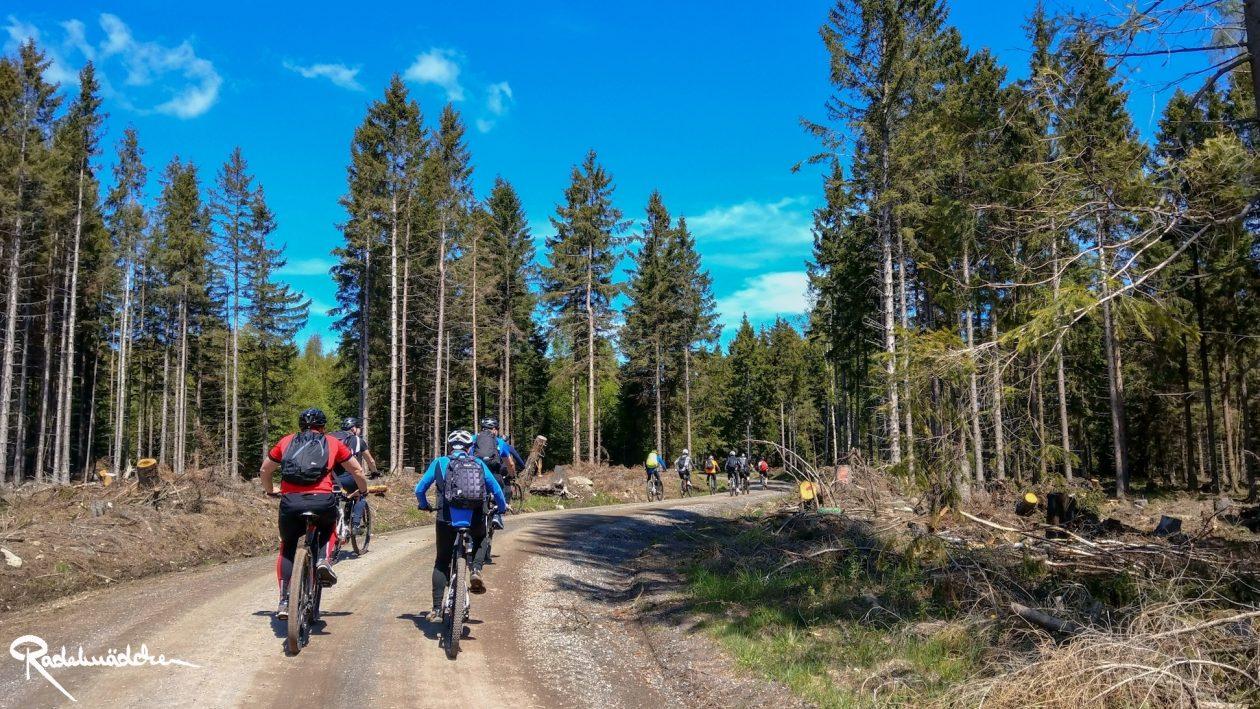 E-MTB-Mountainbike-Harz-Wernigerode-ebike-your-life_Radelmaedchen_Juliane-S-25