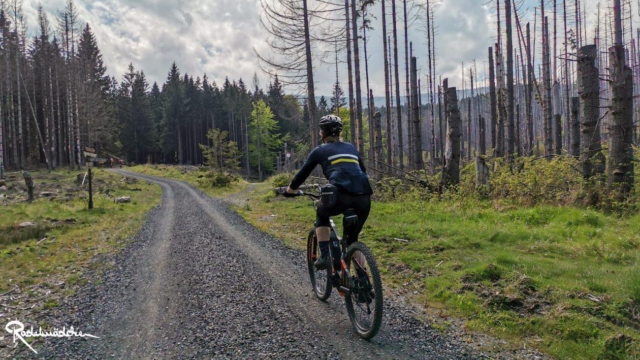 E-MTB-Mountainbike-Harz-Wernigerode-ebike-your-life_Radelmaedchen_Jan-Bubenik-16