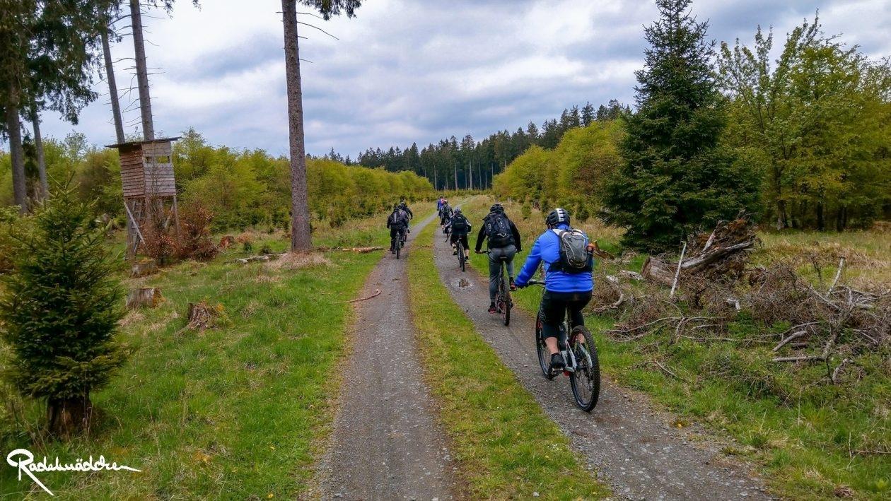 E-MTB-Mountainbike-Harz-Wernigerode-ebike-your-life_Radelmaedchen_Juliane-S-12
