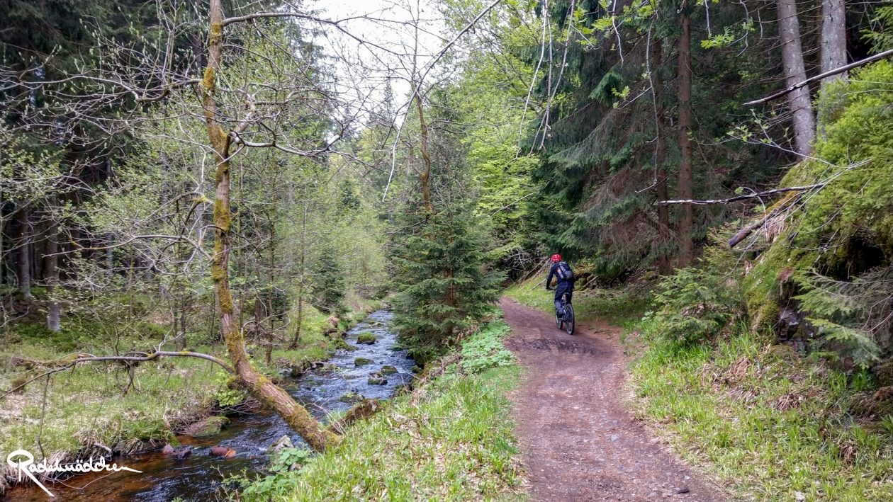 E-MTB-Mountainbike-Harz-Wernigerode-ebike-your-life_Radelmaedchen_Juliane-S-19