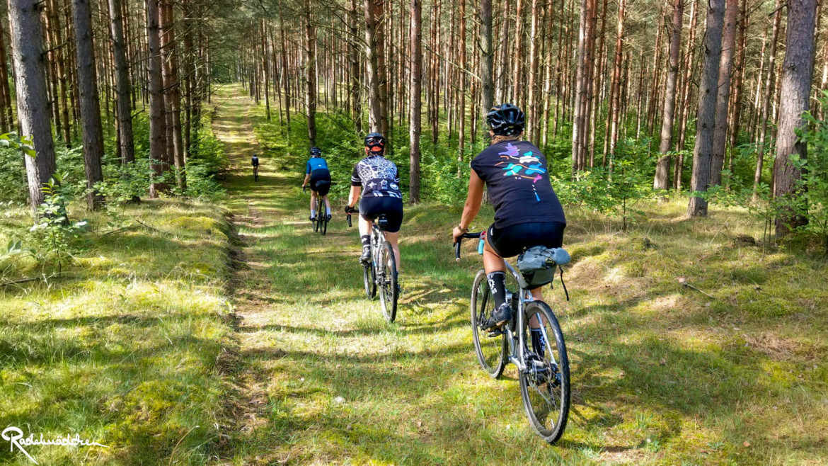 8bar pathfinder cyclists in the wood