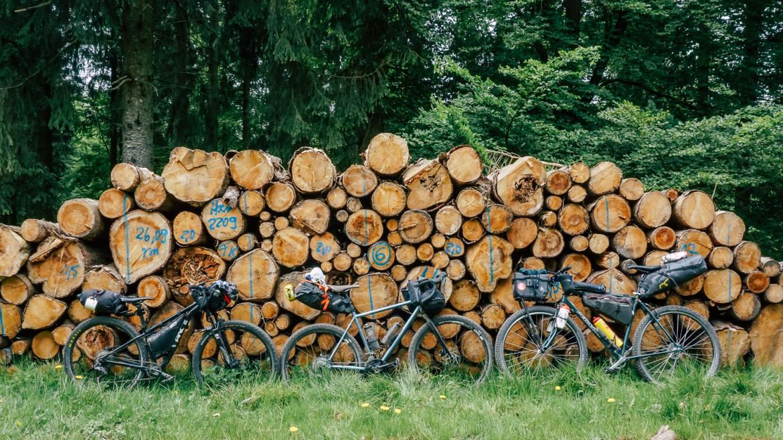 Gravelbikes vor Holzstapel