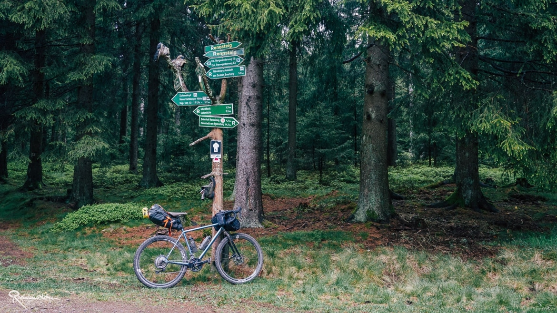Wegweiser mit Fahrrad im Wald