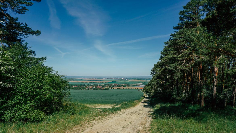 Ausblick ins grüne Tal