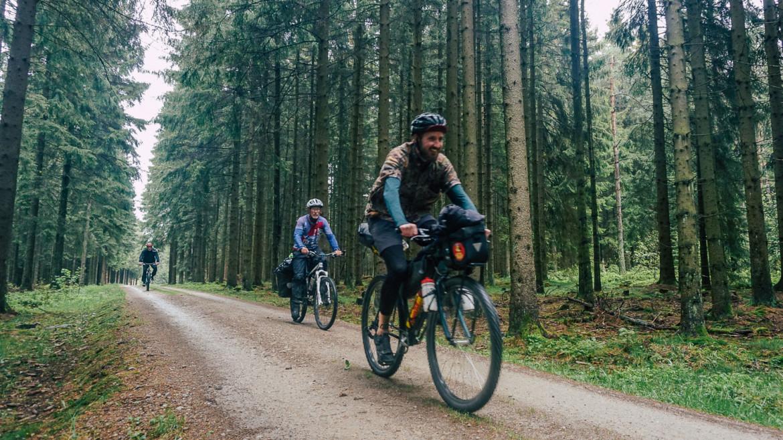 auf Fahrrädern im Wald