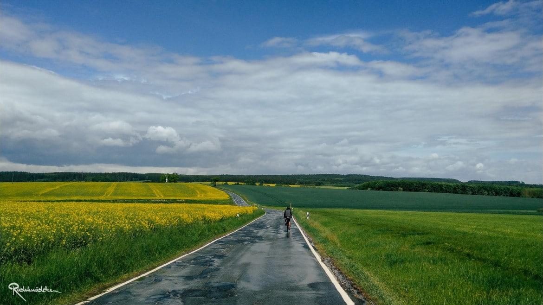 Nasse Straße zwischen Feldern