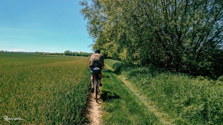 Radfahrer auf Pfad entlang des Felds