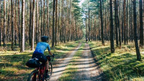 0rbit 360 waldbild mit Radfahrenden