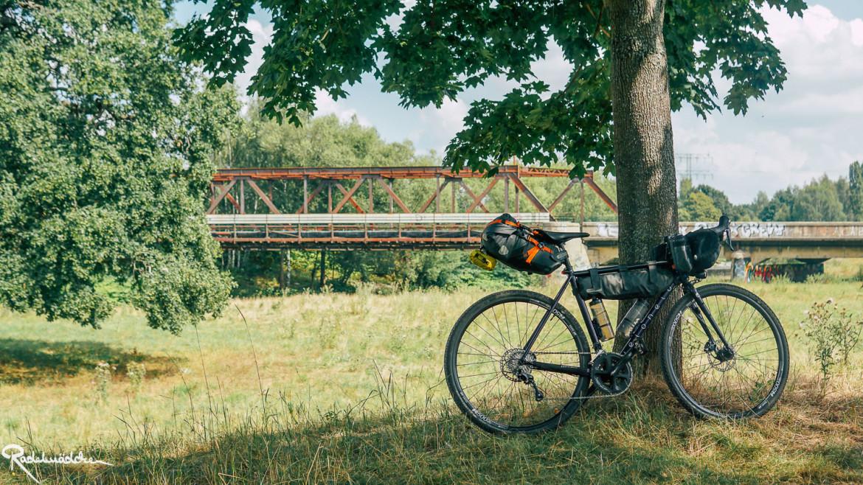 Fahrrad am Baum mit Brücke im Hintergrund
