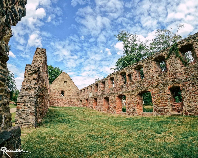Klosterruine Nimbschena