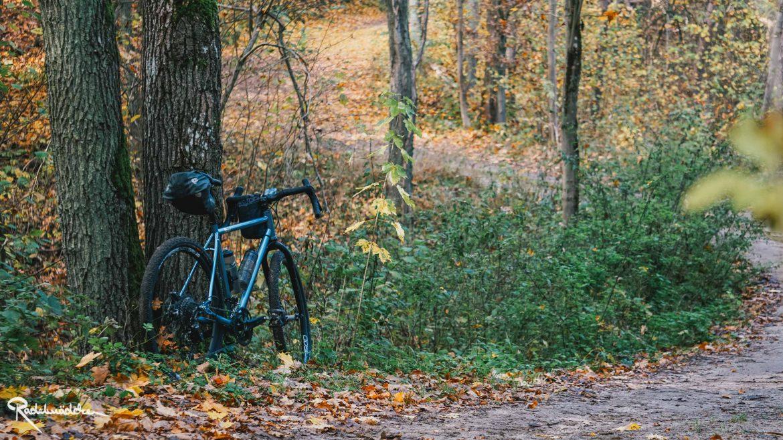 Waldweg mit Fahrrad