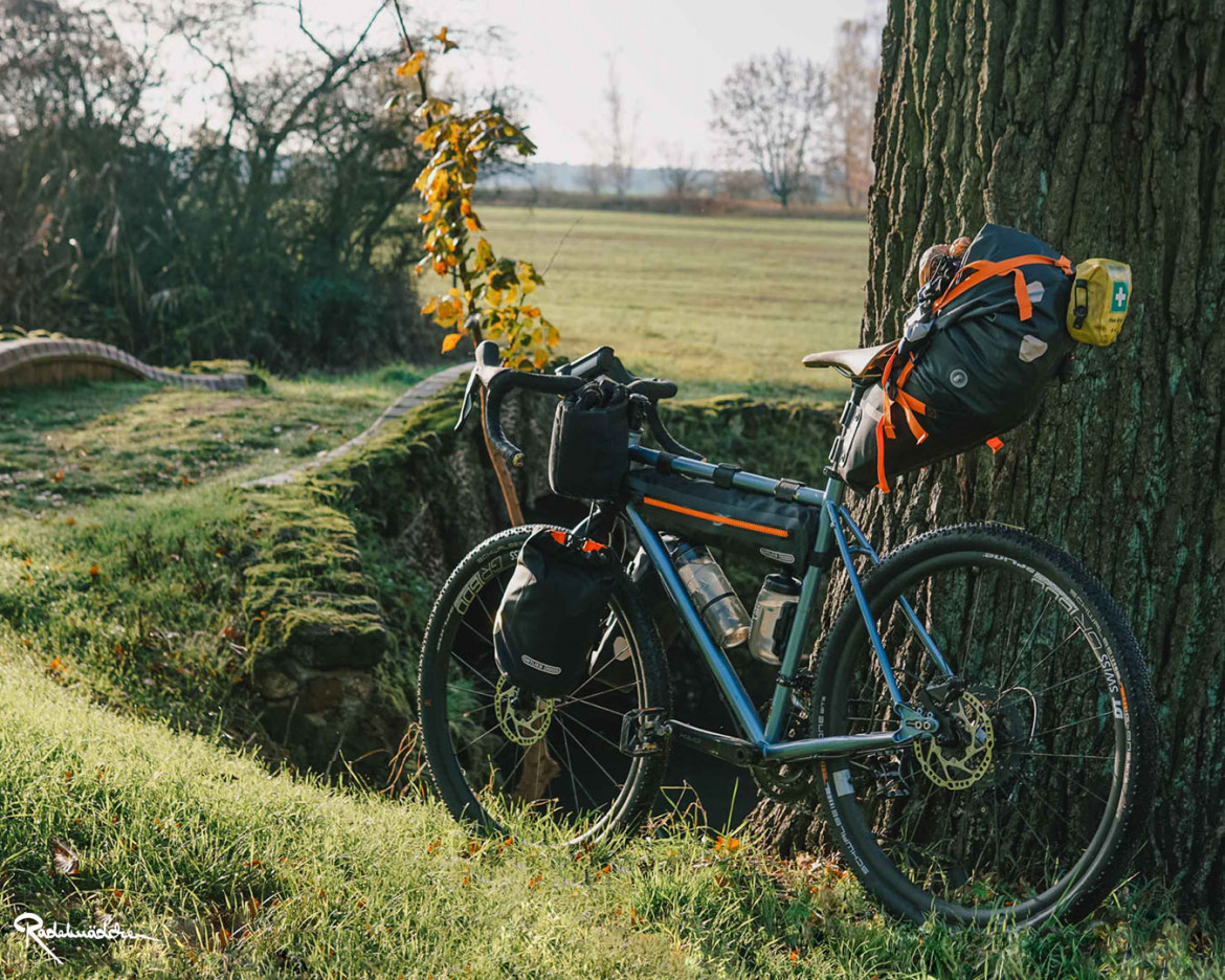 bikepacking gravelbike leaning at a tree