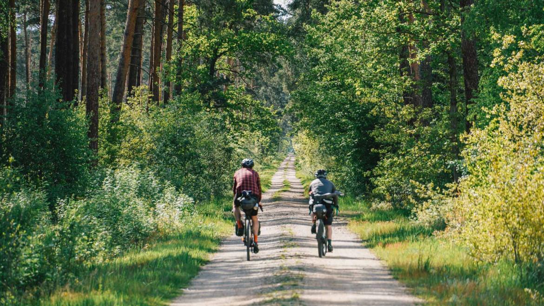 Schotterstraße durch den Wald mit Radfahrern