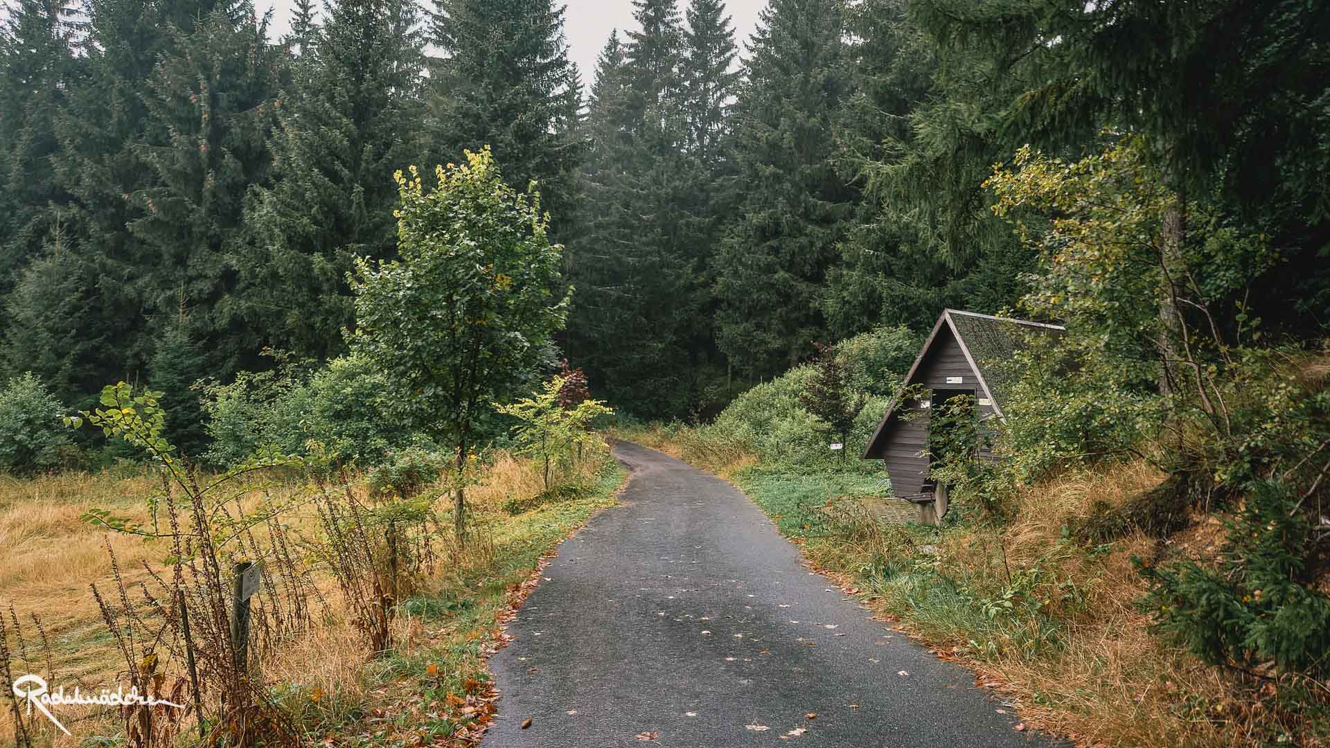 Weg im Grünen mit Hütte